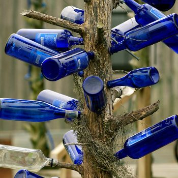 Bottle Tree, Hopsons Plantation, Clarksdale, MS