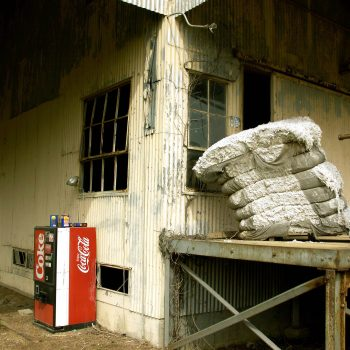 Coke machine and cotton bale, Hopsons Plantation, Clarksdale, MS
