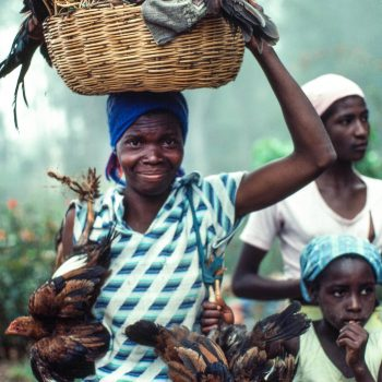 Woman carrying basket on head and chickens, Haiti