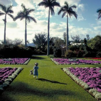 Young girl with Teddy bear in garden, Bermuda