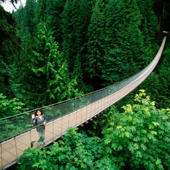 Swinging bridge, Vancouver, British Columbia, Canada